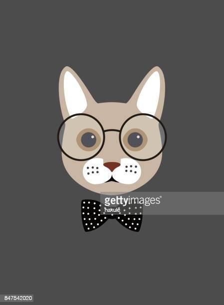 Portrait de chat, porte des lunettes, style cool