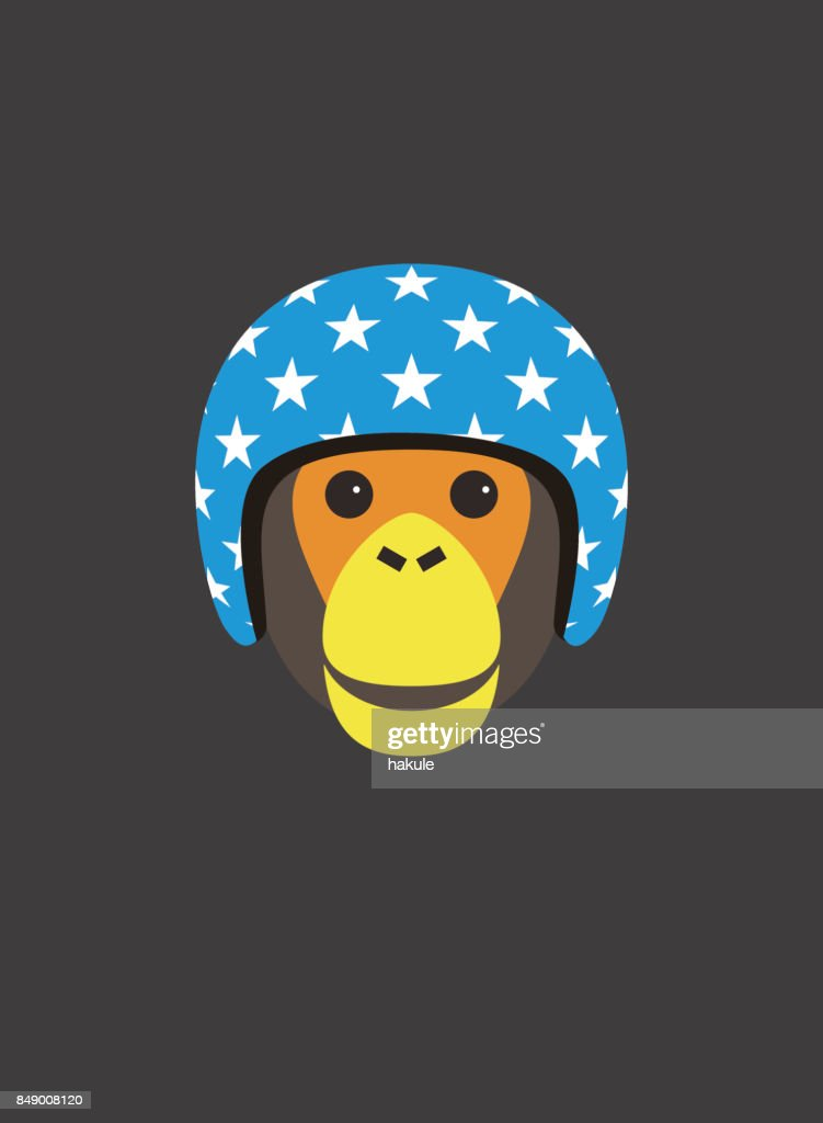 Portrait of chimpanzee, wearing motorcycle helmet, cool style : stock illustration
