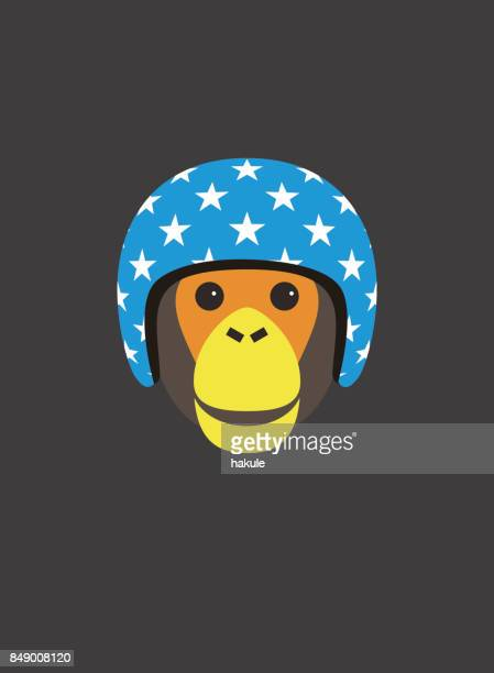 portrait of chimpanzee, wearing motorcycle helmet, cool style - motorcycle helmet isolated stock illustrations, clip art, cartoons, & icons