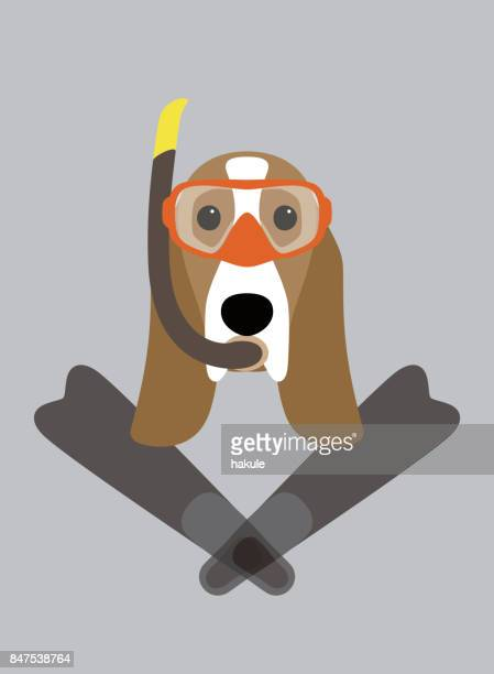 portrait of dog, wearing something, want to diving, cool style like a man - webbed foot stock illustrations, clip art, cartoons, & icons