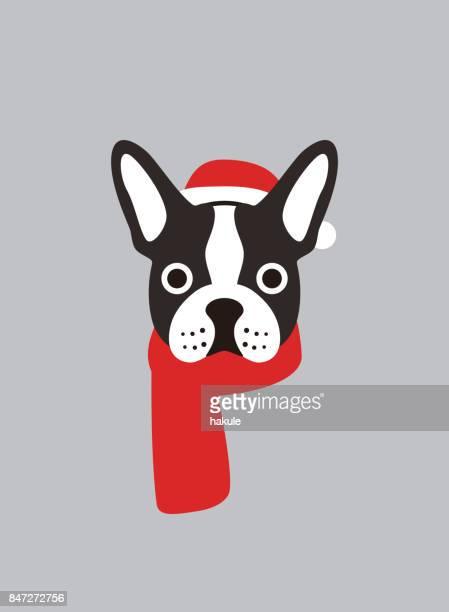 illustrations, cliparts, dessins animés et icônes de portrait de bouledogue français, porter quelque chose, style cool, cosplay de noël - chien humour