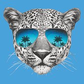 Portrait of Leopard with mirror sunglasses.