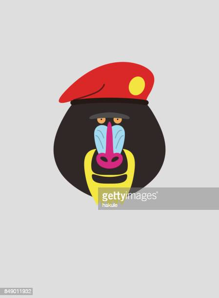 portrait of mandrill, wearing beret, like soldier, cool style - mandrill stock illustrations, clip art, cartoons, & icons