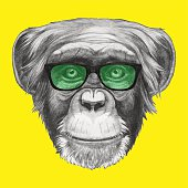 Portrait of Monkey with glasses.