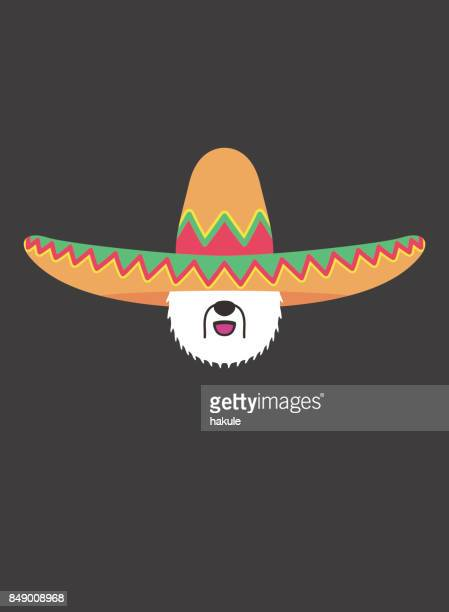 portrait of old english sheepdog, wearing sombrero cap, like mexican cool style - sombrero stock illustrations