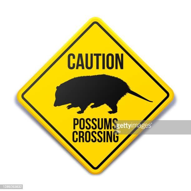 possums crossing animal crossing warning sign - animal crossing sign stock illustrations