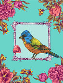 postcard with a bird