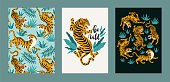 Poster set of tigers and tropical leaves. Trendy illustration.