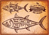 poster with a detailed diagram of butchering tuna