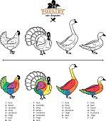 Poultry Cuts Diagrams