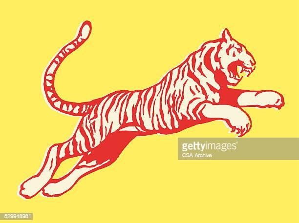 pouncing tiger - animals hunting stock illustrations