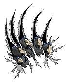 Predator claws