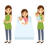 Pregnancy and birth illustration.