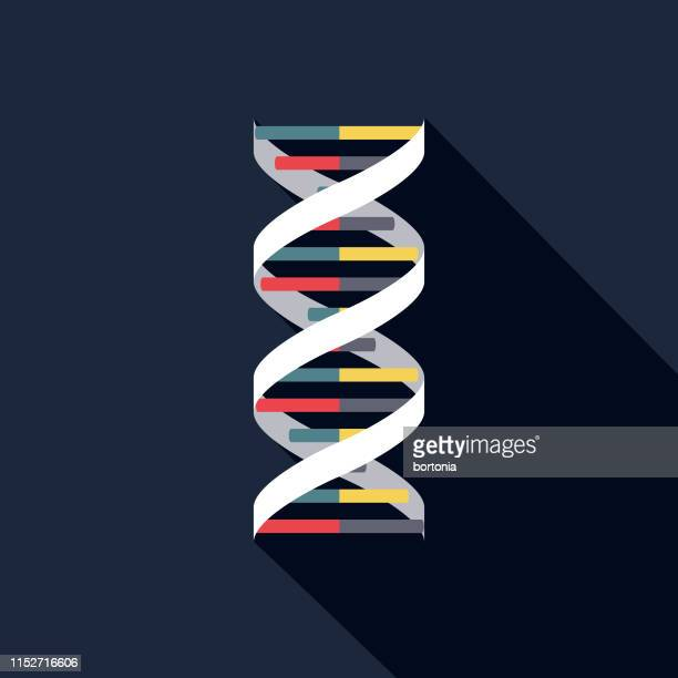 dna pregnancy icon - dna stock illustrations