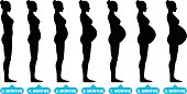 Pregnant female silhouettes