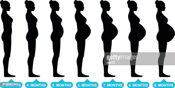 pregnant female silhouettes - sex and reproduction stock illustrations, clip art, cartoons, & icons