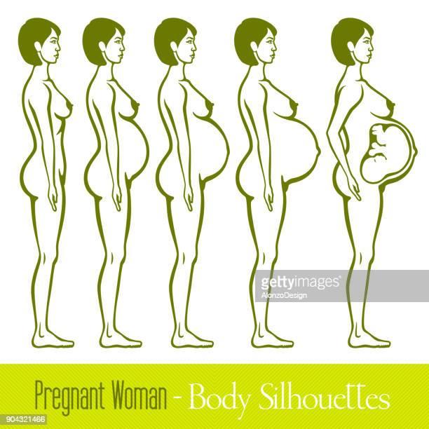 妊娠中の女性のシルエット