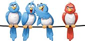 Prejudiced Birds