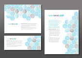 Presentation template set with sample text layout hexagon