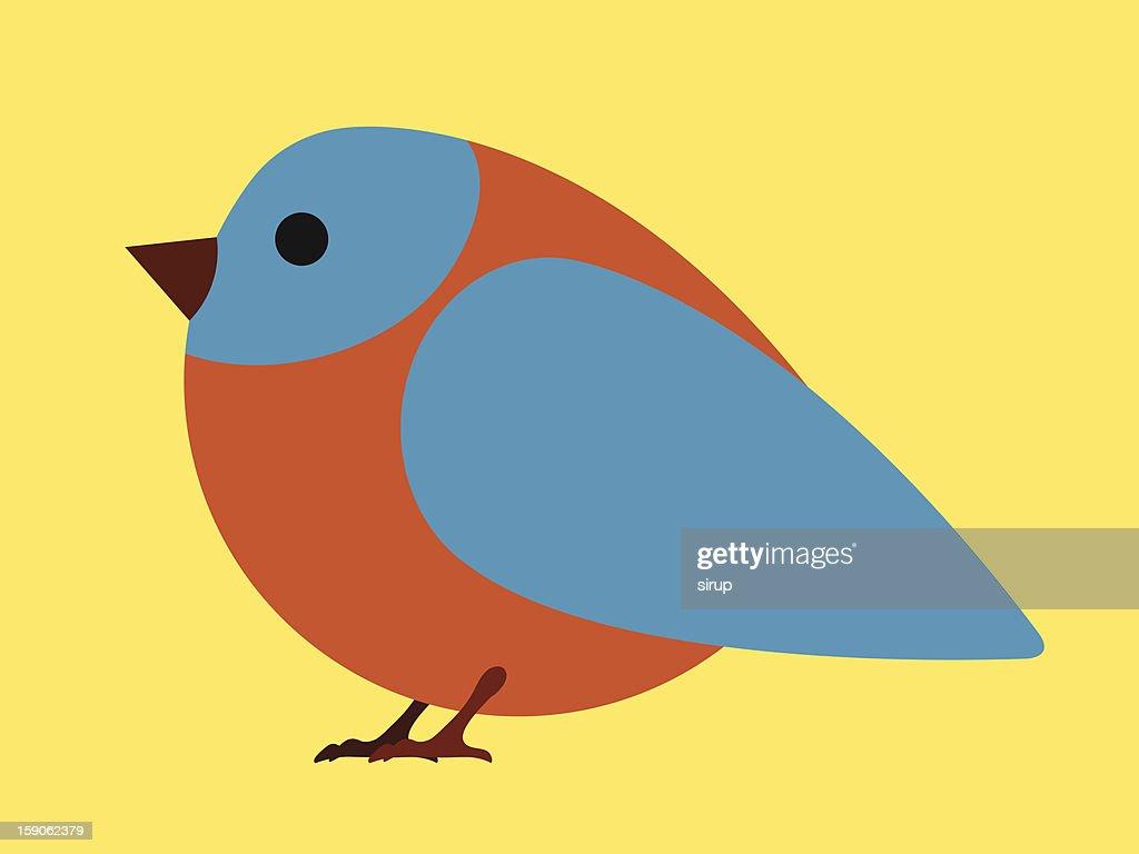 Pretty little blue bird