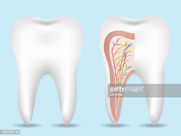 print - toothache stock illustrations, clip art, cartoons, & icons