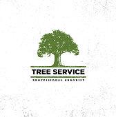 Professional Arborist Tree Care Service Organic Eco Sign Concept. Landscaping Design Raw Vector Illustration