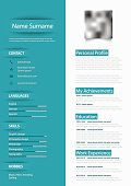 Professional blue white resume cv with design elements