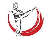Professional Taekwondo Athlete In Action