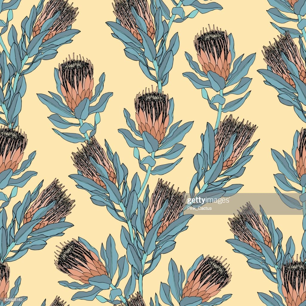 Protea Vector Pattern - Bright Colors