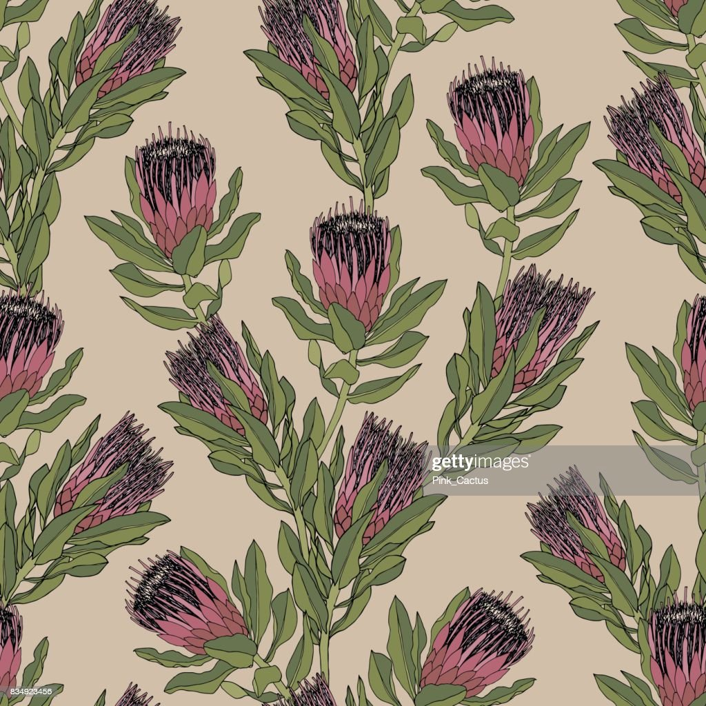 Protea Vector Pattern - Vintage Colors