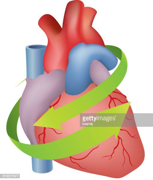 protect heart - surrounding stock illustrations, clip art, cartoons, & icons