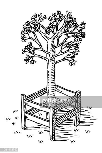 Schutzzaun um jungen Baum Zeichnung