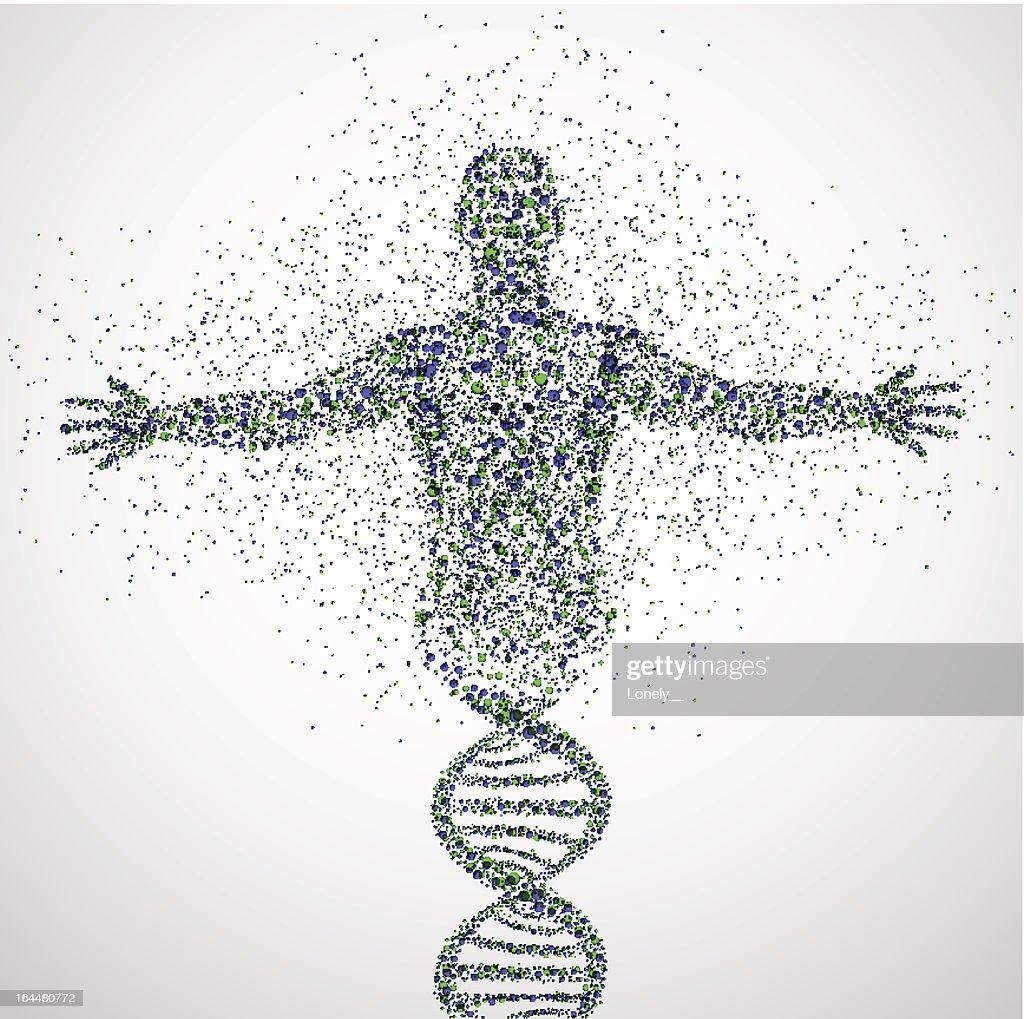 Prototype of man