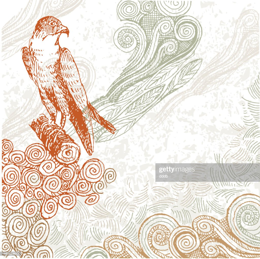 Proud Hawk doodle : stock illustration
