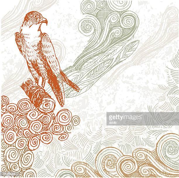 proud hawk doodle - hawk bird stock illustrations, clip art, cartoons, & icons