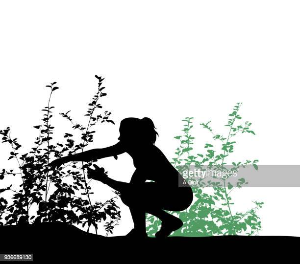 pruning wildberry bushes - landscaper stock illustrations, clip art, cartoons, & icons