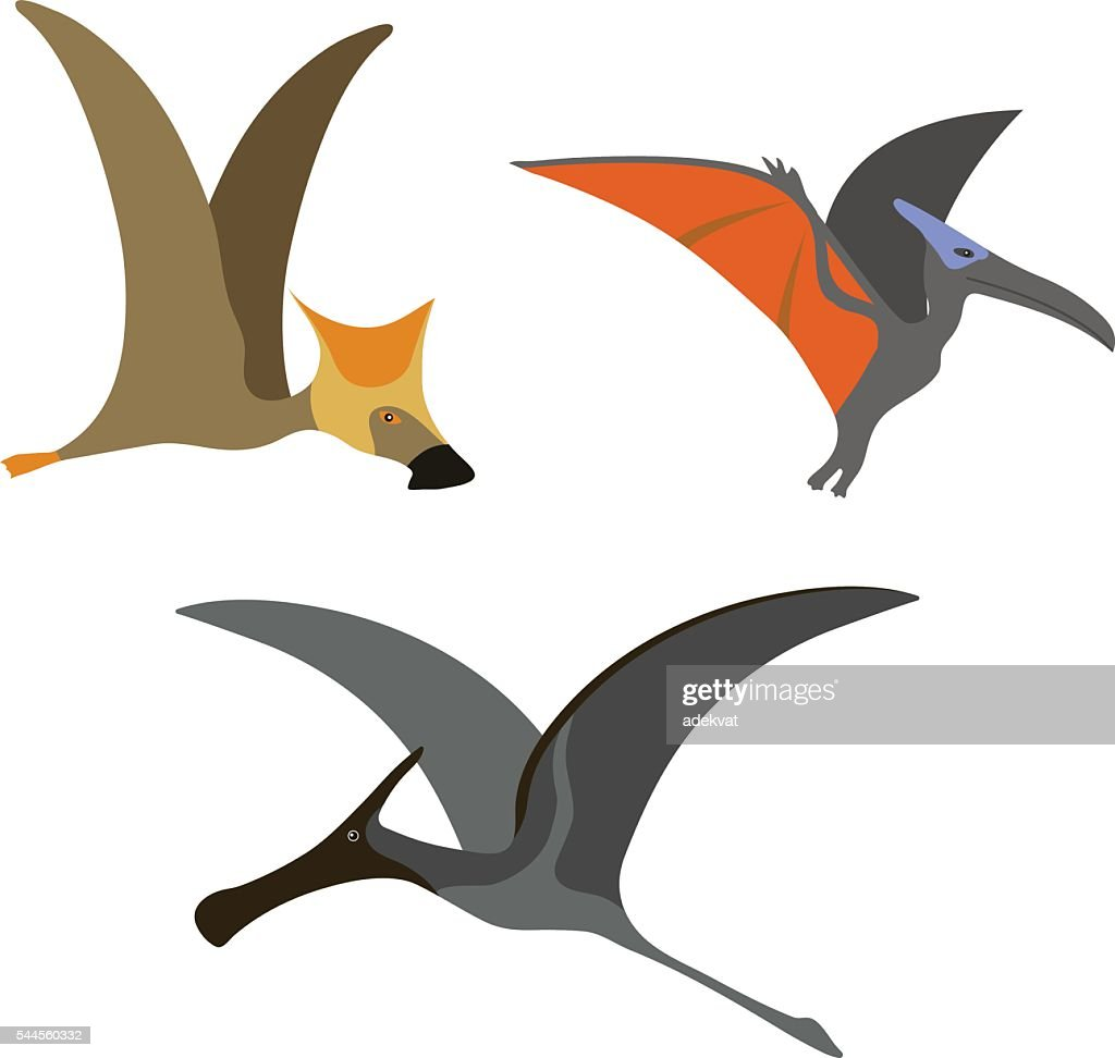 Pterodactyl dinosaur vector illustration.