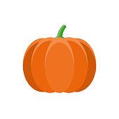 Pumpkin Flat Design Vegetable Icon