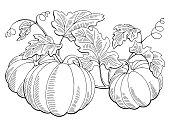 Pumpkin graphic bush plant black white isolated sketch illustration vector