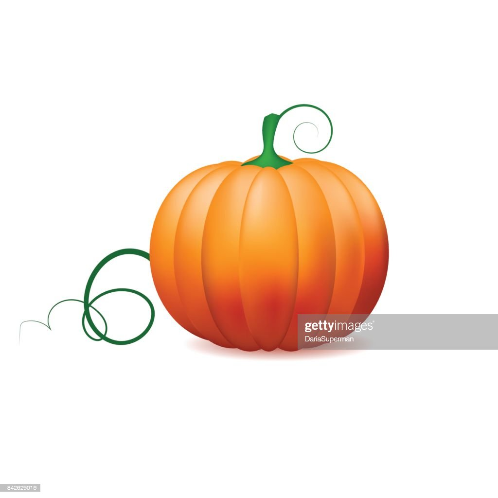 Pumpkin icon ,Vector vegetables.