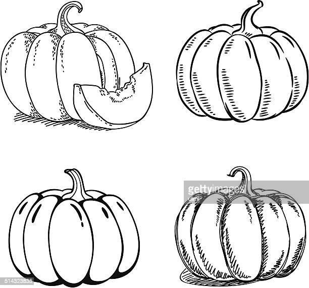 pumpkin - pumpkin stock illustrations, clip art, cartoons, & icons