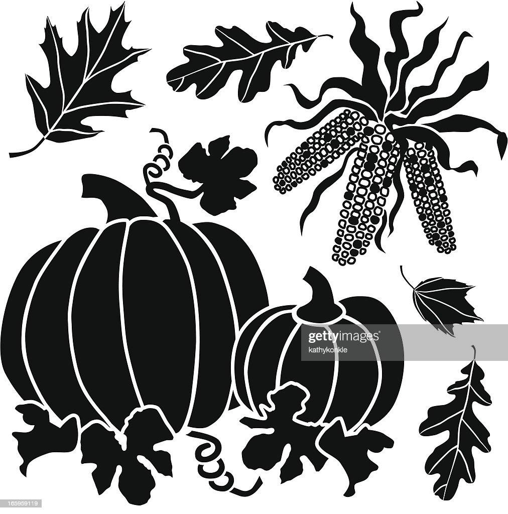 pumpkins and Native American corn