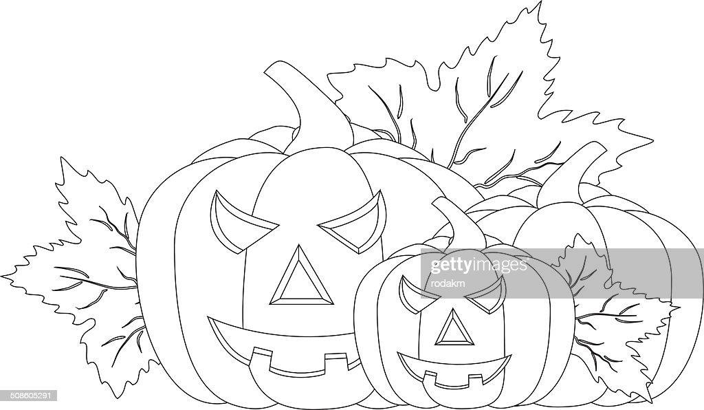 Abóboras de Halloween : Arte vetorial