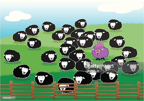 Punk Sheep among Black Sheeps