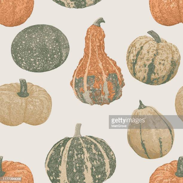 pupkins vegetables seamless repeat - marrom stock illustrations