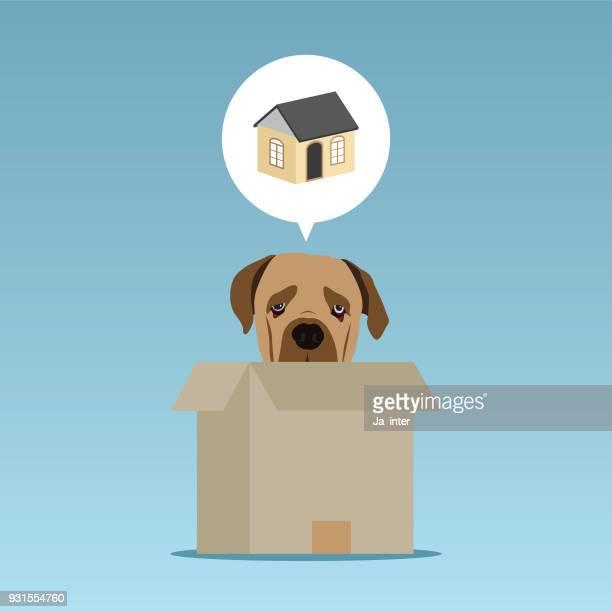 ilustraciones, imágenes clip art, dibujos animados e iconos de stock de cachorro piensa en casa - caseta de perro