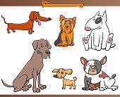 purebred cartoon dog characters set