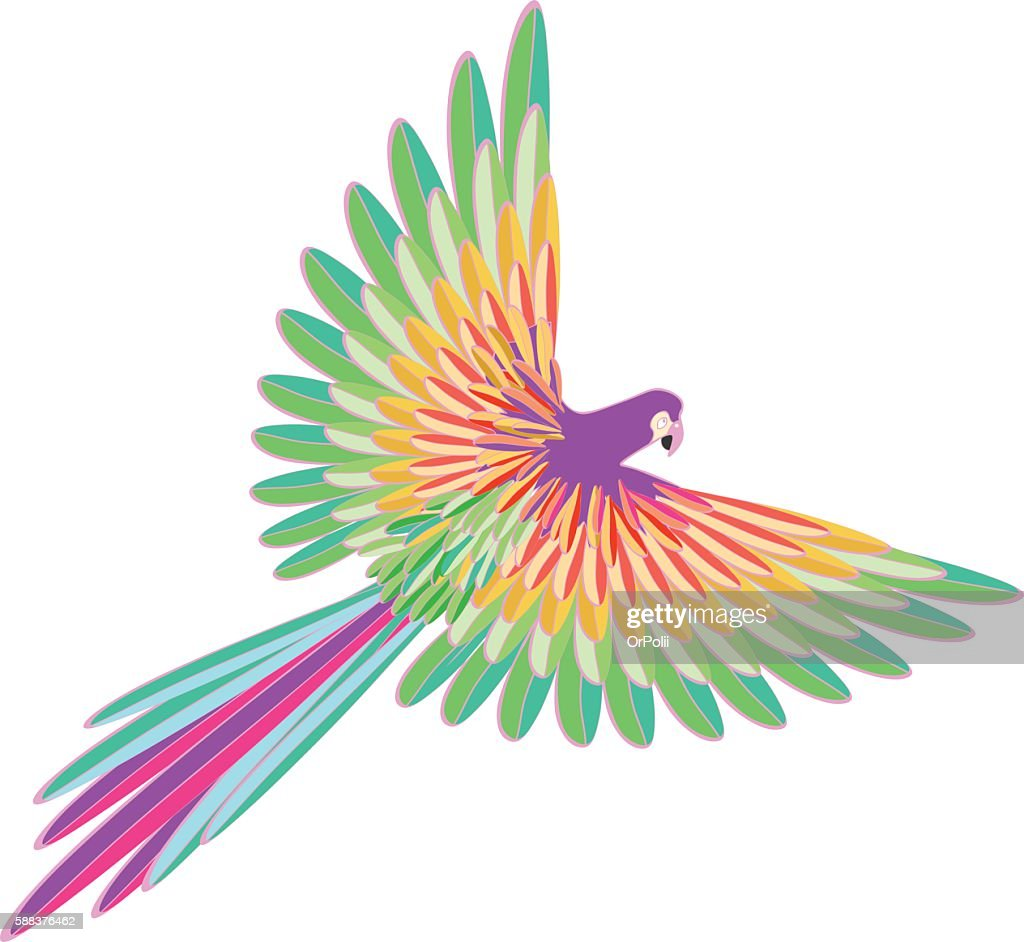purple Caribbean the parrot flying. vector illustration