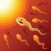 Purposeful spermatozoon