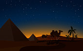Pyramid and Camels in Desert night Scene